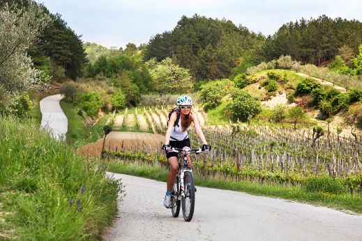 Rolling hills and vineyards of Istria - istria cycling