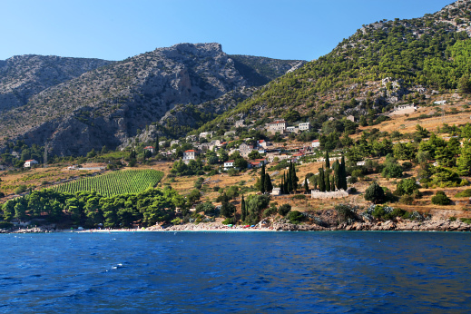 Island of Brac - full of lavander fields, vineyards and pine trees.