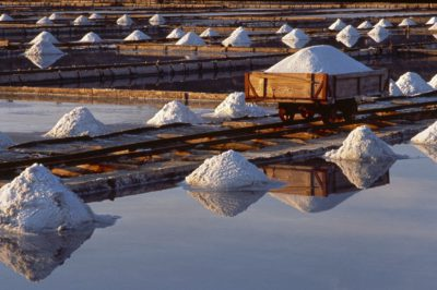 White gold at Piran saltpans
