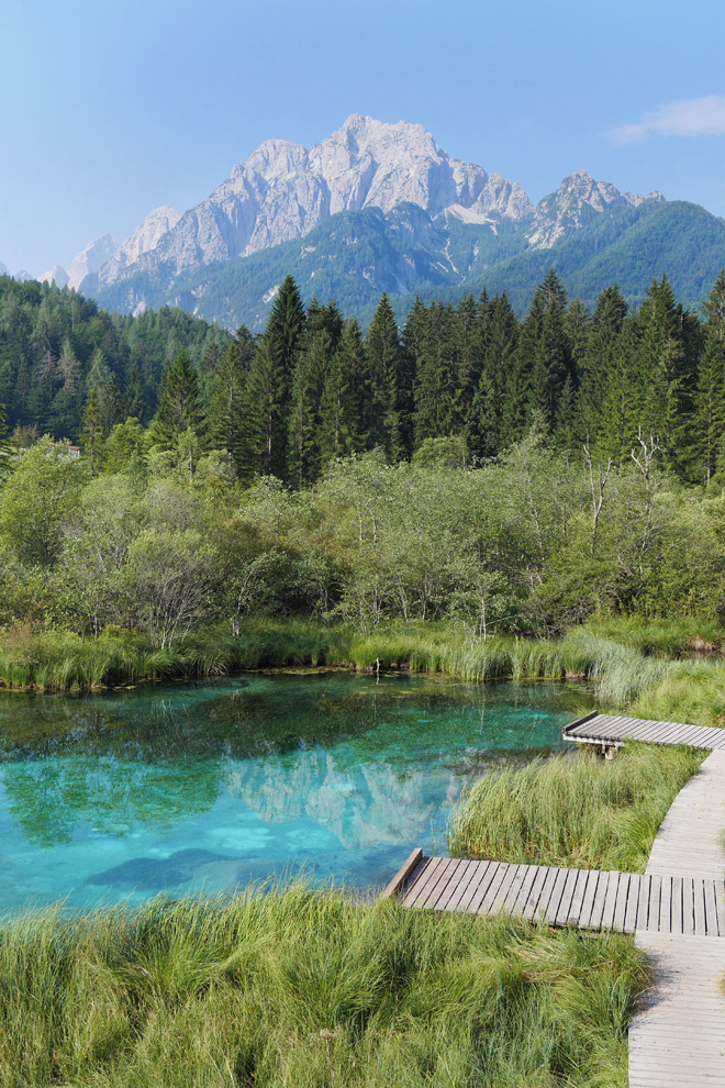 Zelenci, the spring of Sava Dolinka river