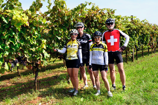 Happy cyclists checking the harvest before wine tasting.
