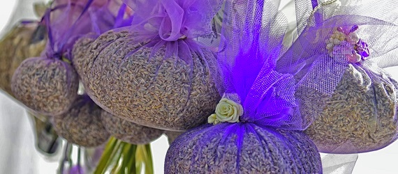 wellness-lavender