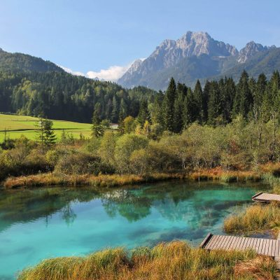 Zelenci springs, source of Sava Dolinka river, a tributary to the Danube.
