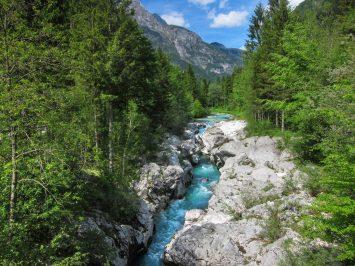 Emerald green Soča river.