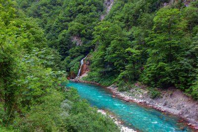 Virgin forrest surrounds emerald Tara river.
