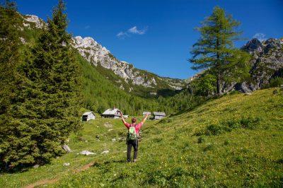 High Alpine pasture is still very much alive in Slovenia.